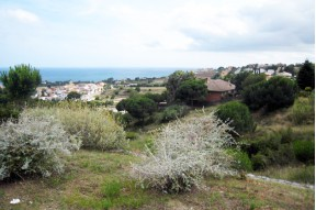 A land of plot in Teià on the Maresme Coast